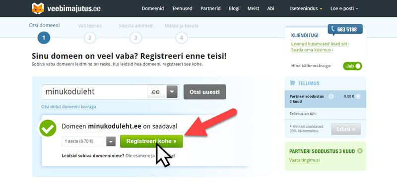 Domeeni registreerimine ja kontroll